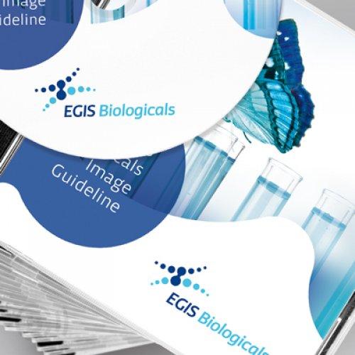 EGIS cégbemutató