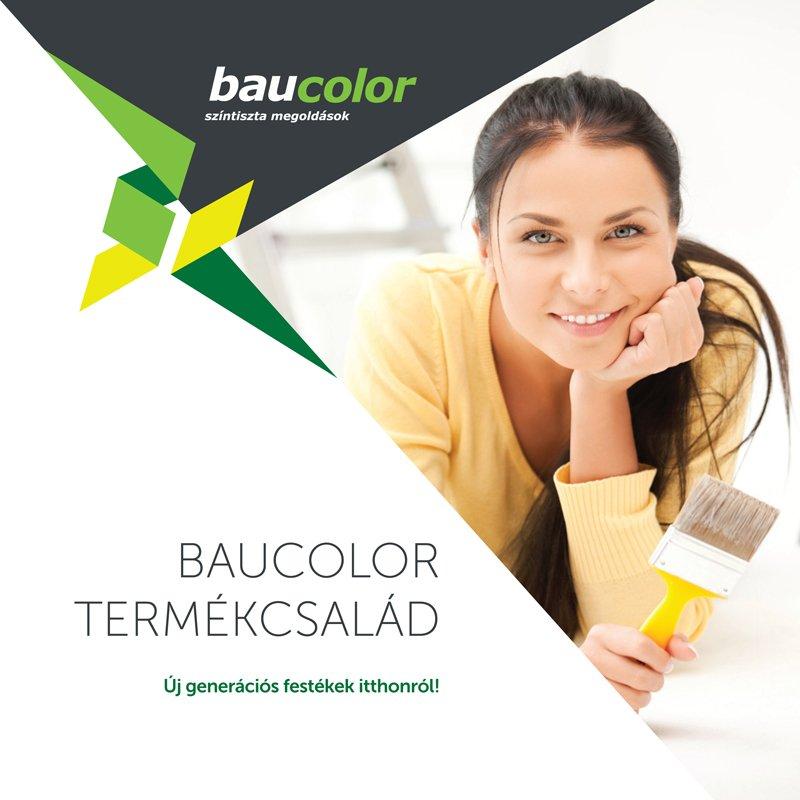 Baucolor (2)